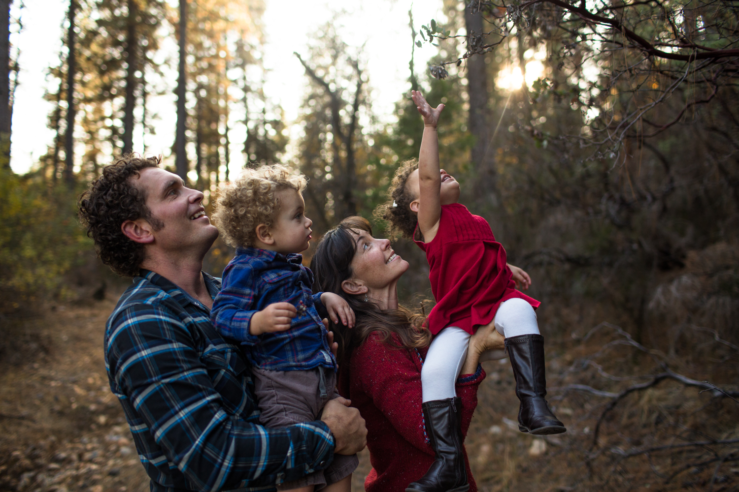nevada city family portrait photographer