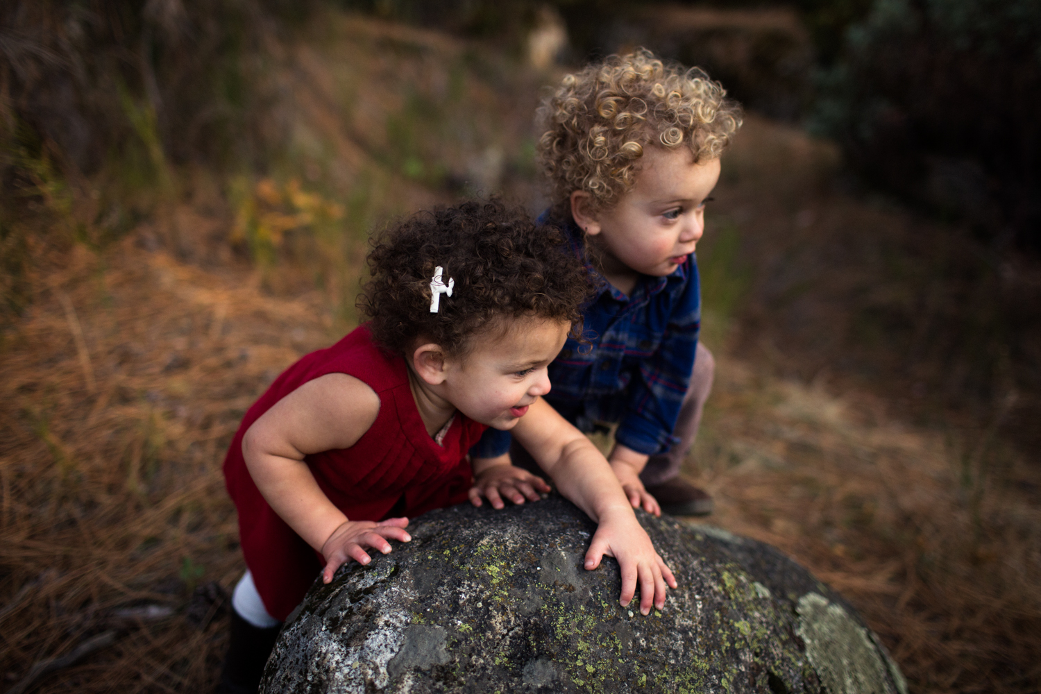nevada county family photographer