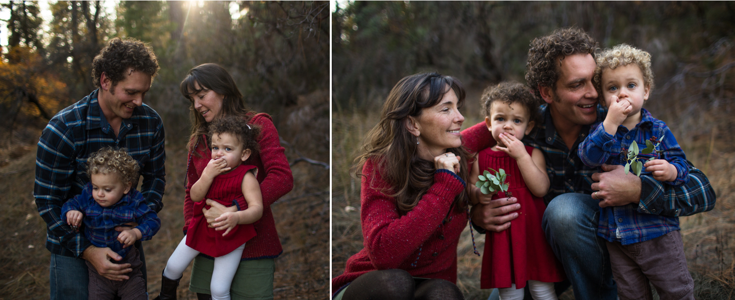 nevada city family photographer