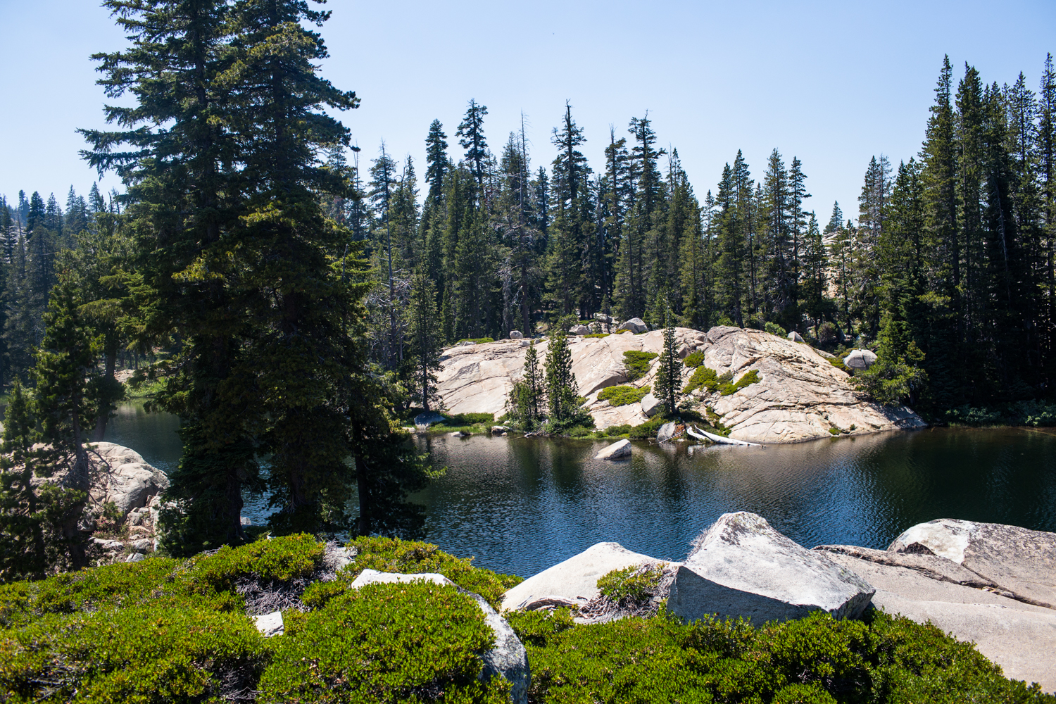 long lake tahoe national forest