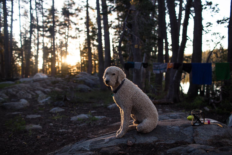sunrise hidden lake tahoe national forest
