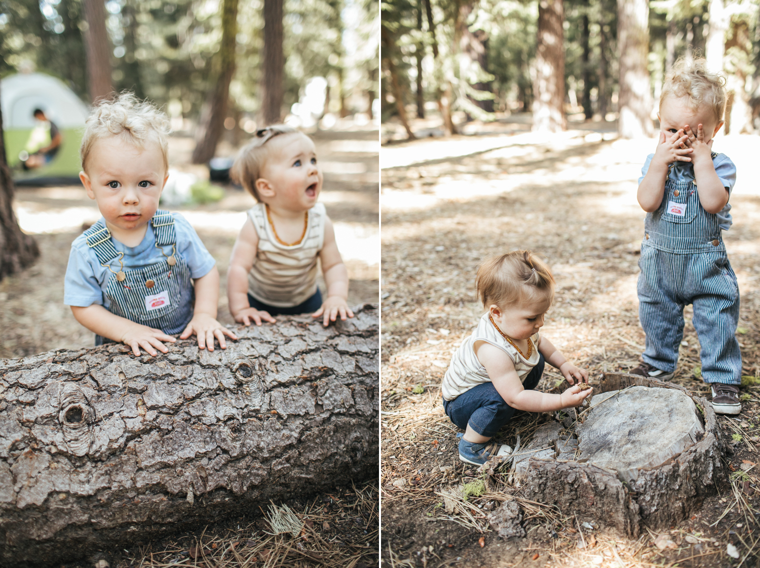 tahoe-city-family-photographer.jpg
