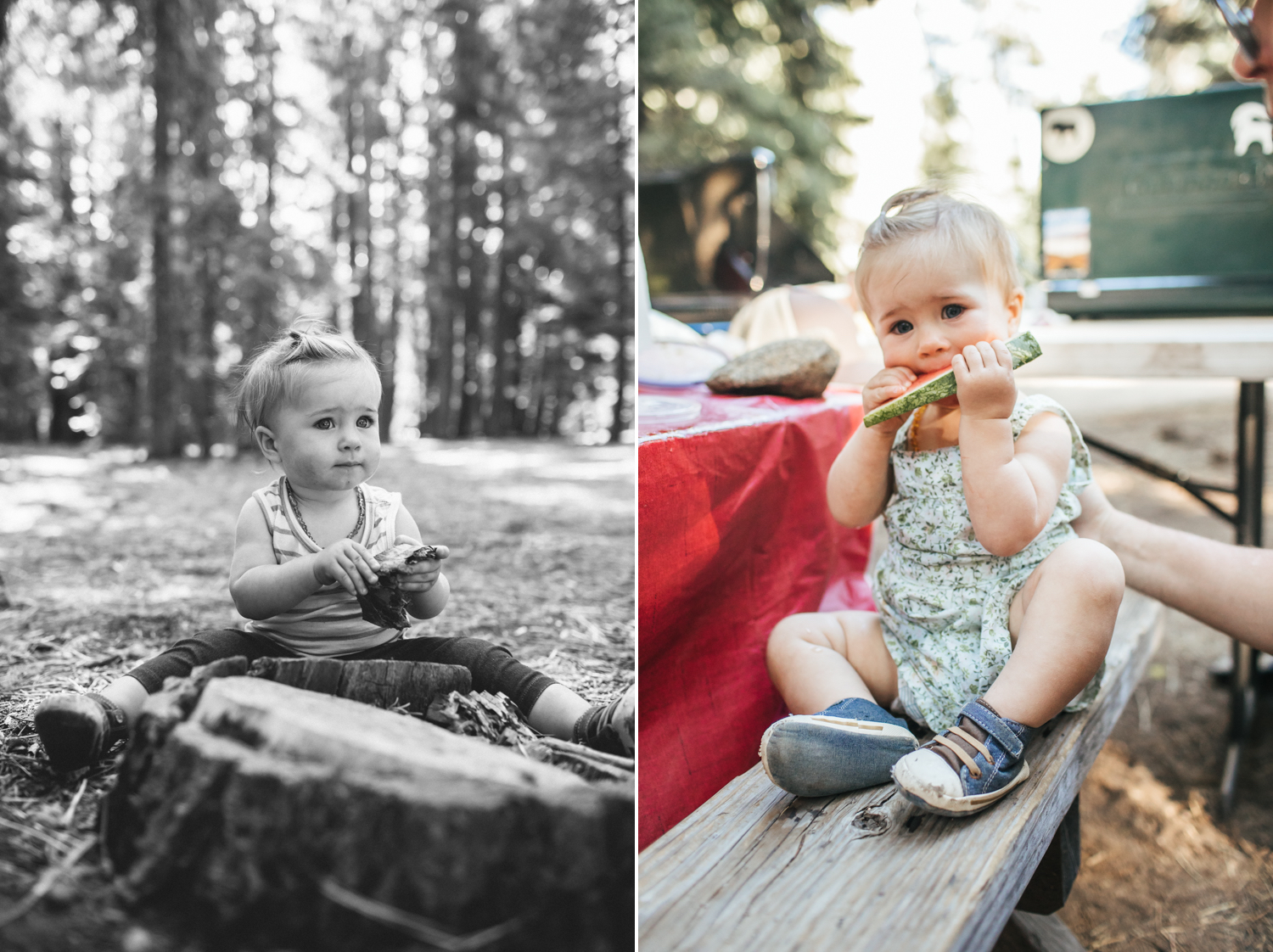 truckee-family-photographer.jpg