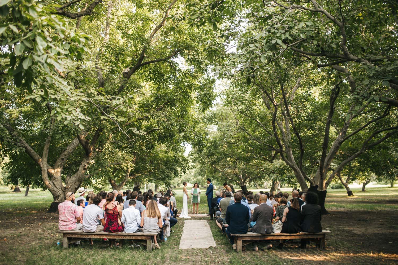 full-belly-farm-wedding-pecan-grove-5.jpg