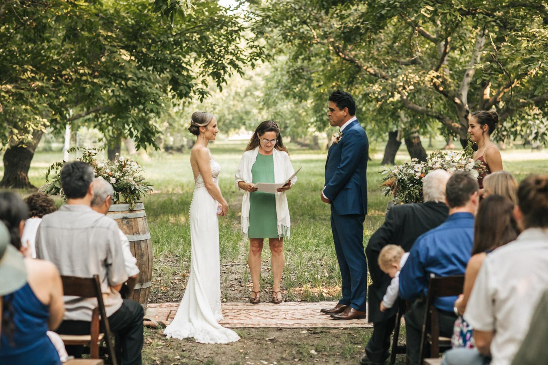 full-belly-farm-wedding-pecan-grove-1.jpg