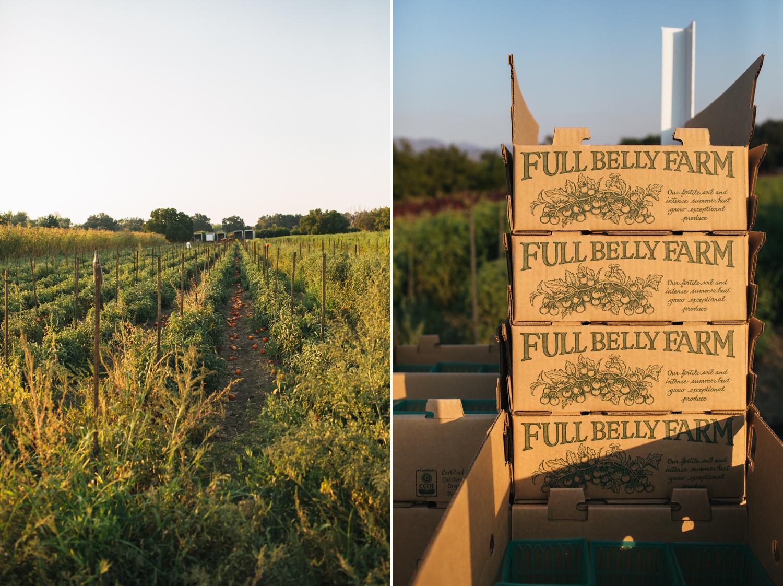 full-belly-farm-wedding-90.jpg