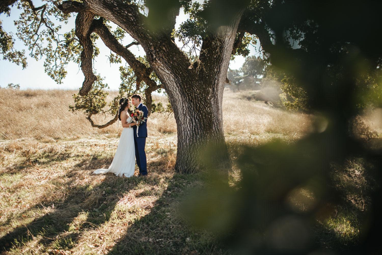 sonoma-west-marin-petaluma-wedding-photographer-4.jpg