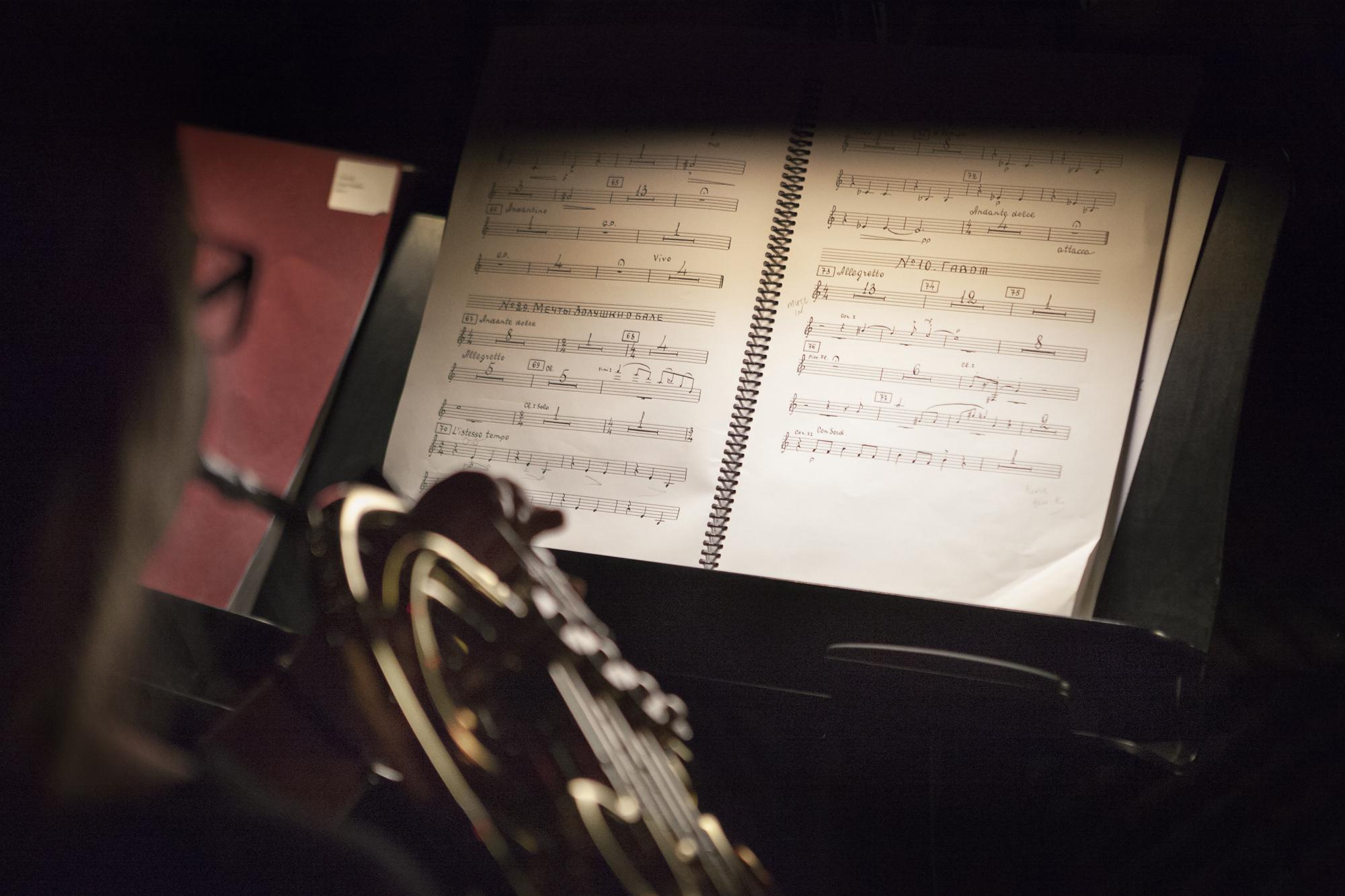 MarisaHo_Orchestra_20130927_0146.jpg
