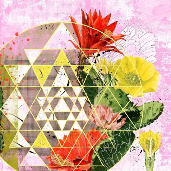 Cactus Flower Mandala