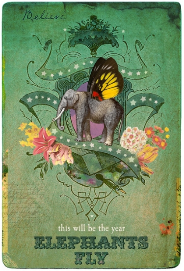 The Year Elephants Fly