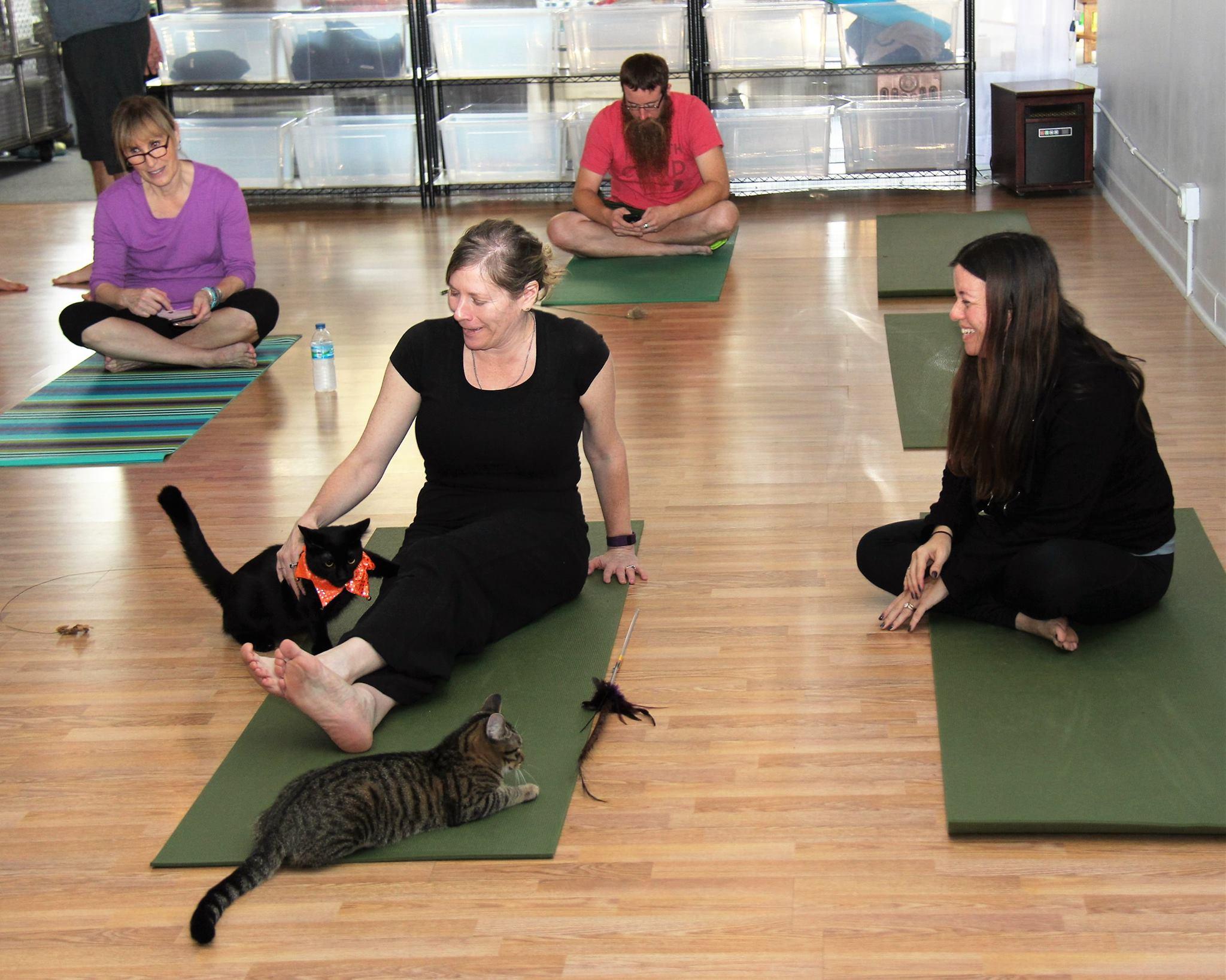 October 2016 Yoga7.jpg