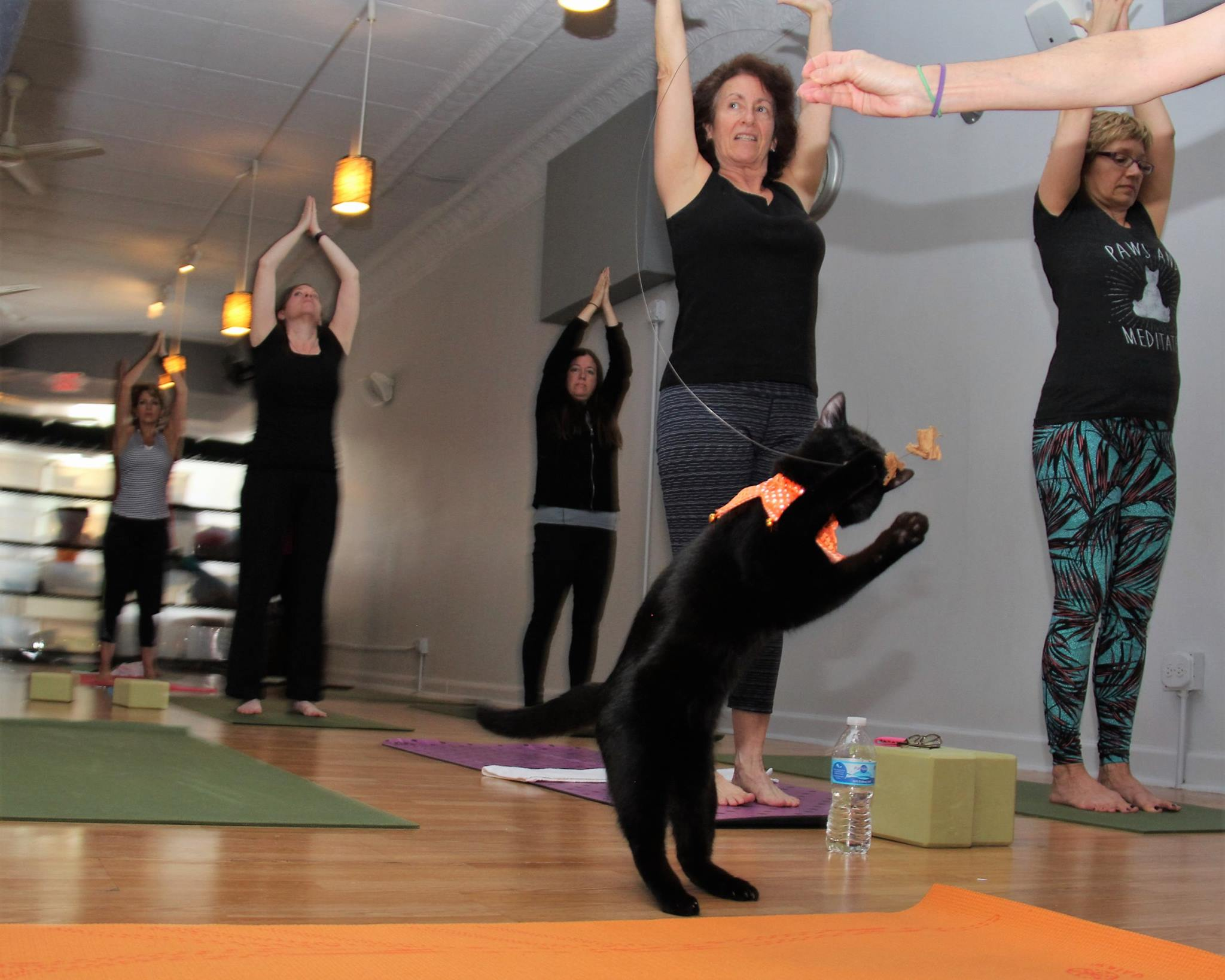 October 2016 Yoga15.jpg