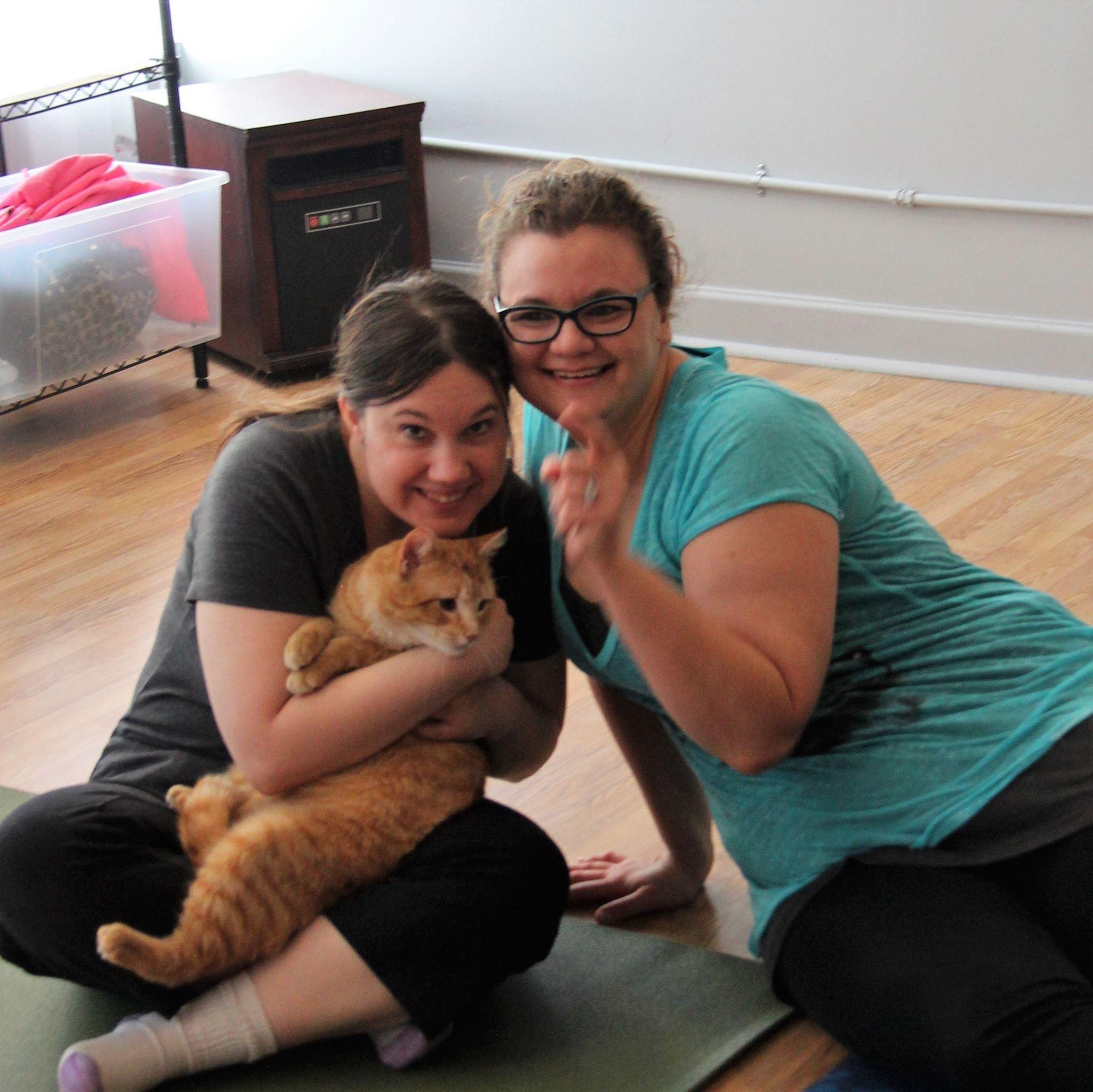 Cat Yoga Feb 2017_9.jpg