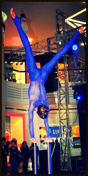 New Year Fashion Show eşliğinde Nur Yerlitaş ve Özge Ulusoy ile yılbaşı modası hakkında fikir sahibi olan davetliler, ardından Cirque du Soleil dansçılarından Erika Lemay'ın ilk defa Aqua Florya ziyaretçileri için hazırladığı dans şovunu izlediler.  Avrupa'nın deniz manzaralı ilk Alışveriş ve Yaşam Merkezi Aqua Florya, 15 Aralık Cumartesi gecesi gerçekleştirdiği yeni yıla özel sürprizli alışveriş partisiyle Özge Ulusoy, Nur Yerlitaş, Tuğba Özerk, Arte Tahir, Ali Nuhoğlu, Cüneyt Asan ve Serhan Sokullu gibi iş, sanat ve cemiyet hayatının önde gelen isimlerine ev sahipliği yaptı.  Geçtiğimiz cumartesi gecesi saat 02:00'ye kadar kapılarını ziyaretçilerine açık tutan Aqua Florya'da gün boyu süren sürprizlerin ardından akşam saatleri başlayan alışveriş eğlencesinde, öncelikle Nur Yerlitaş ve Özge Ulusoy ile yılbaşı şıklığı üzerine konuşuldu ve görkemli bir Fashion Show eşliğinde mankenler sunum yaptı.  Dünyaca ünlü dans grubu Cirque du Soleil'in dansçılarından Erika Lemay, ilk defa sergilediği dans şovu ile Aqua Florya ziyaretçilerini büyüledi. Gecenin ilerleyen saatlerinde DJ kabinine giren Ozan Doğulu'nun keyifli performansları ile eğlence geç saatlere kadar hız kesmeden devam etti.
