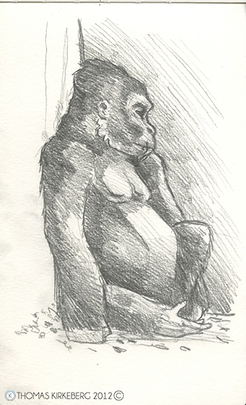 At the Columbus Zoo, doing a sketchbook assignment for the Illustrative Drawing class.