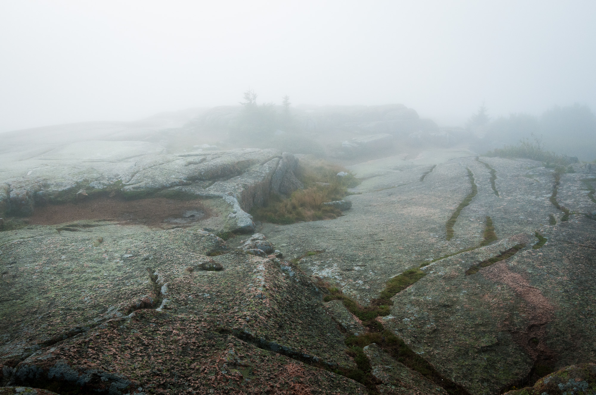 Interesting granite surfaces in the fog on Cadillac Mountain