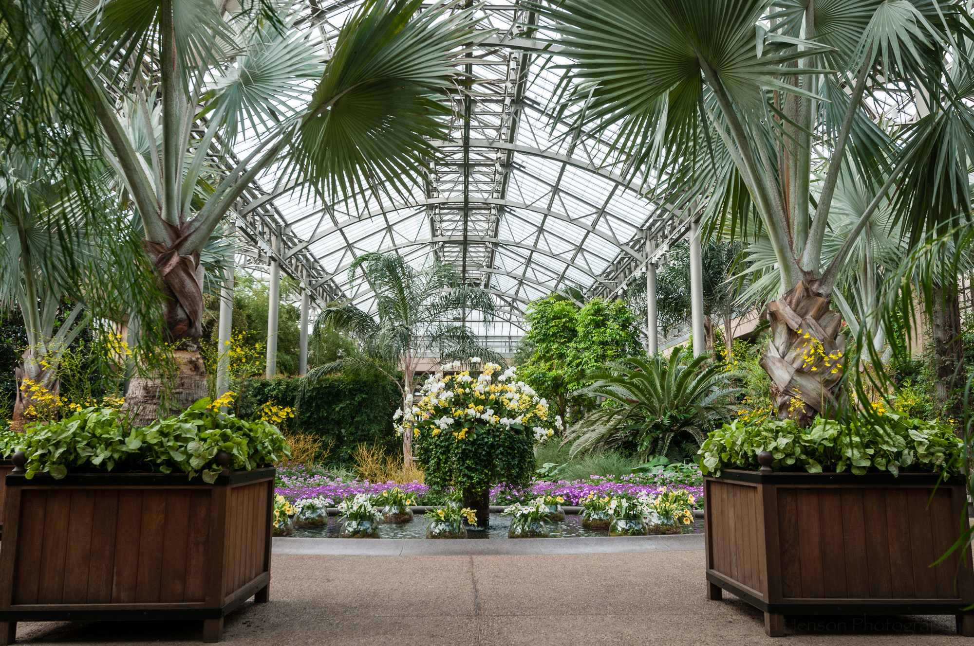 A view inside the Conservatory