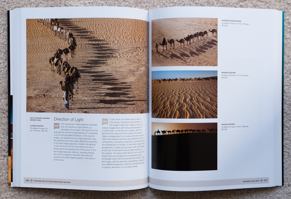 Reading the Light: Examples of how the direction of light can affect the look of a photograph.