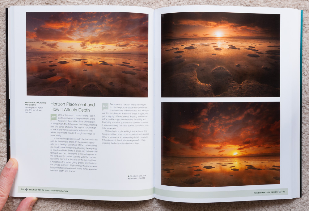 The Elements of Design: Examples of moving the position of the horizon within the photo.