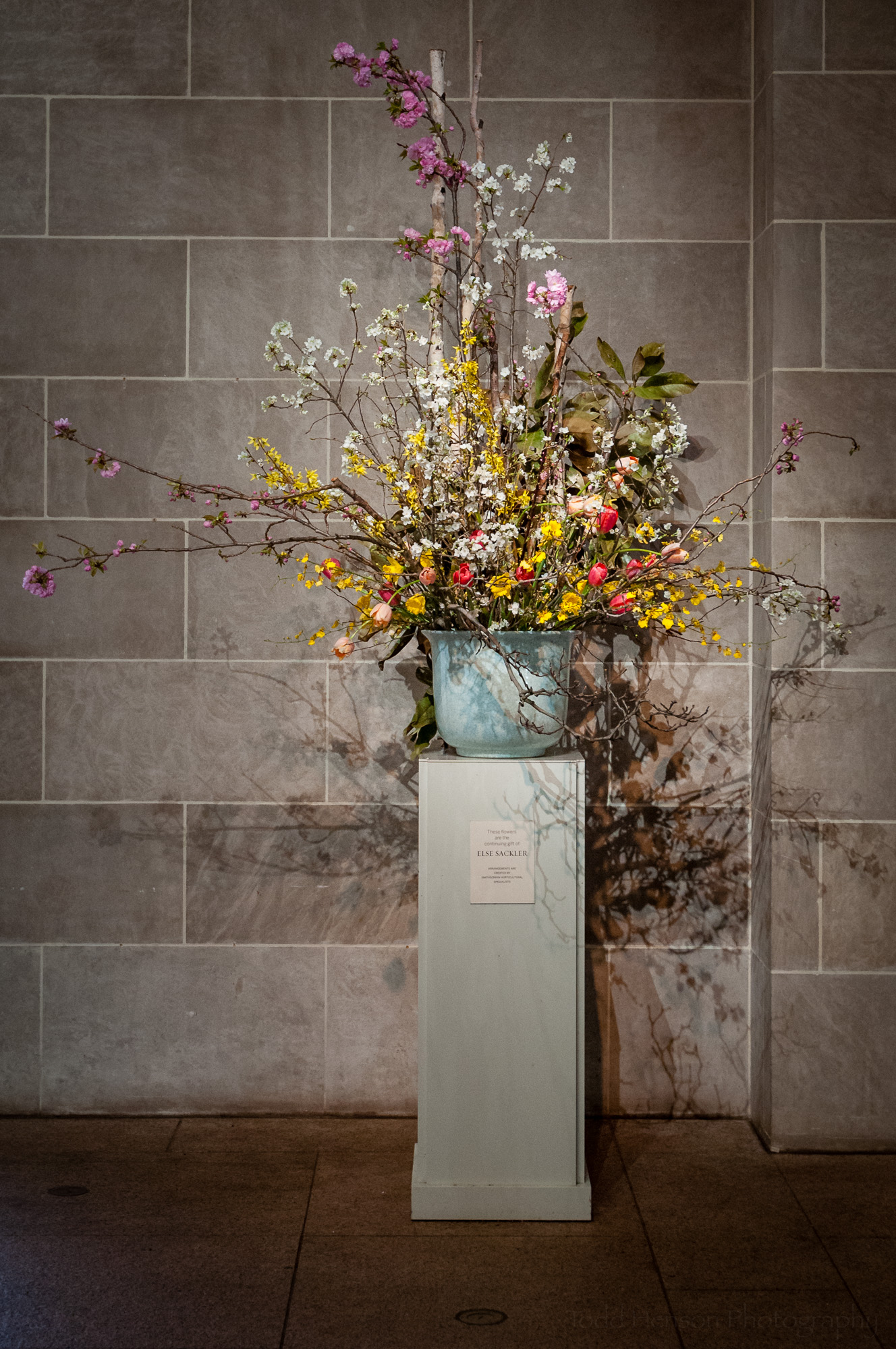 Flower display in the Sackler Gallery entrance. These are a continuing gift of Else Sackler.
