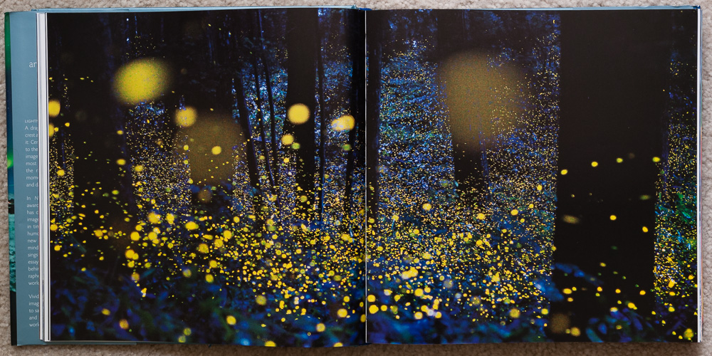 Pages 54-55 of   Stunning Photographs  , in the section titled:  Mystery .
