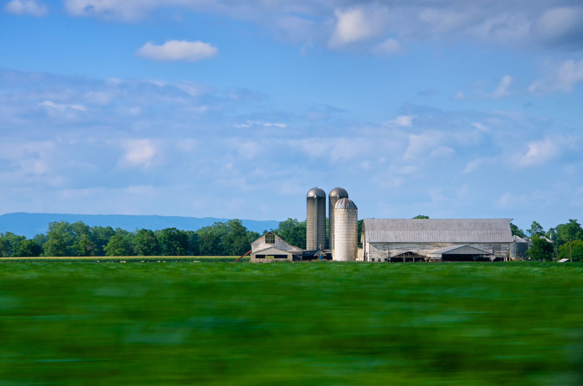 Farm From the Road (Mount Jackson, Virginia)
