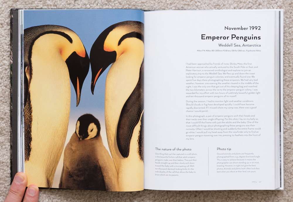Photographs from the Edge  by Art Wolfe, pages 46-47, November 1992, Emperor Penguins, Weddell Sea, Antarctica.