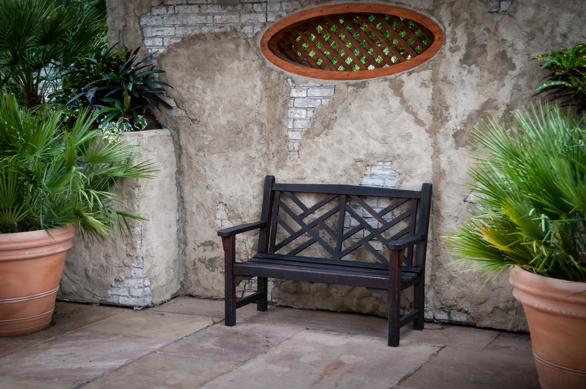 A Bench Beside the Gardens , at the U.S. Botanic Garden