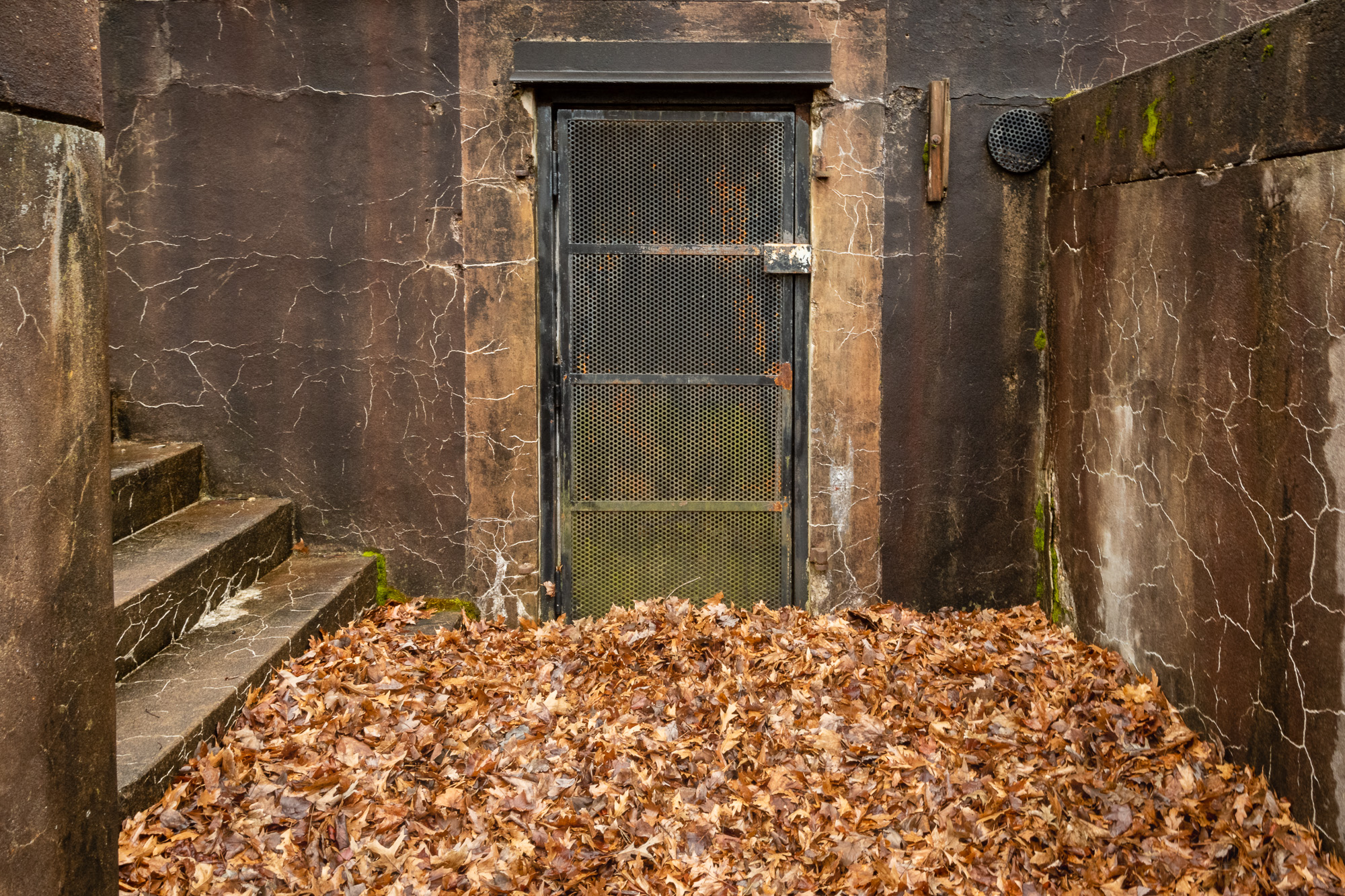 A leaf filled walkway of Battery Sater.