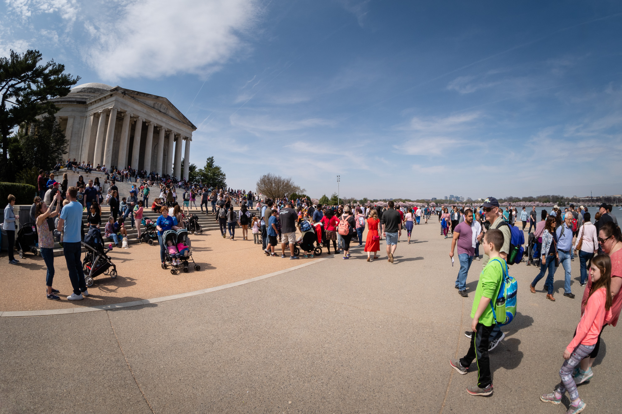 Jefferson Memorial Cherry Blossom Crowds