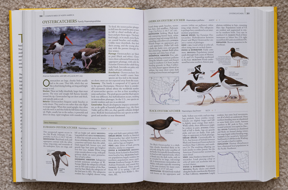 Pages 200-201 of  National Geographic Complete Birds of North America