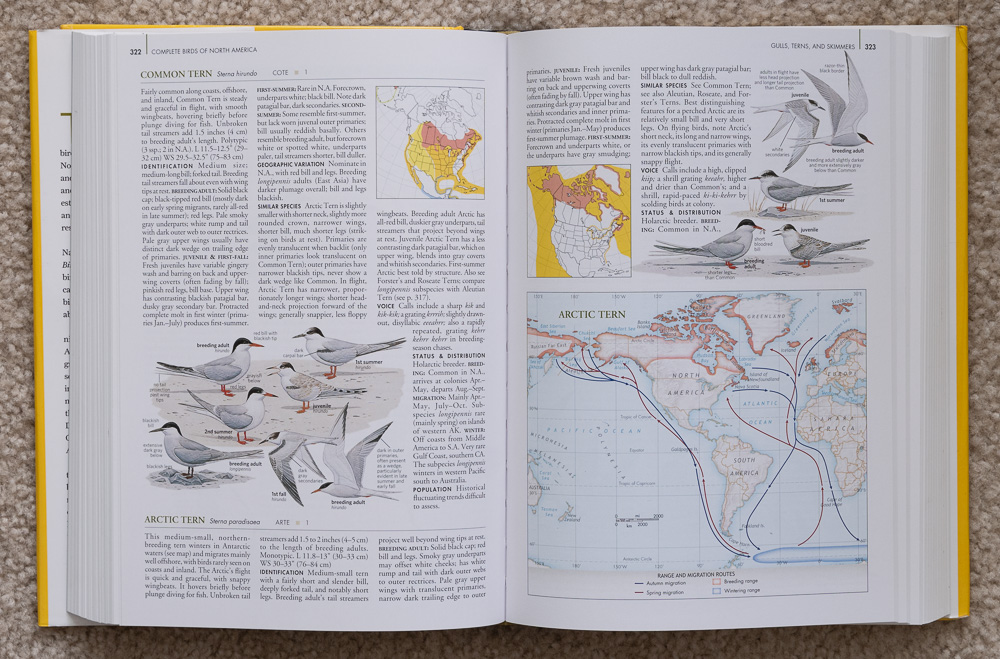 Pages 322-323 of  National Geographic Complete Birds of North America
