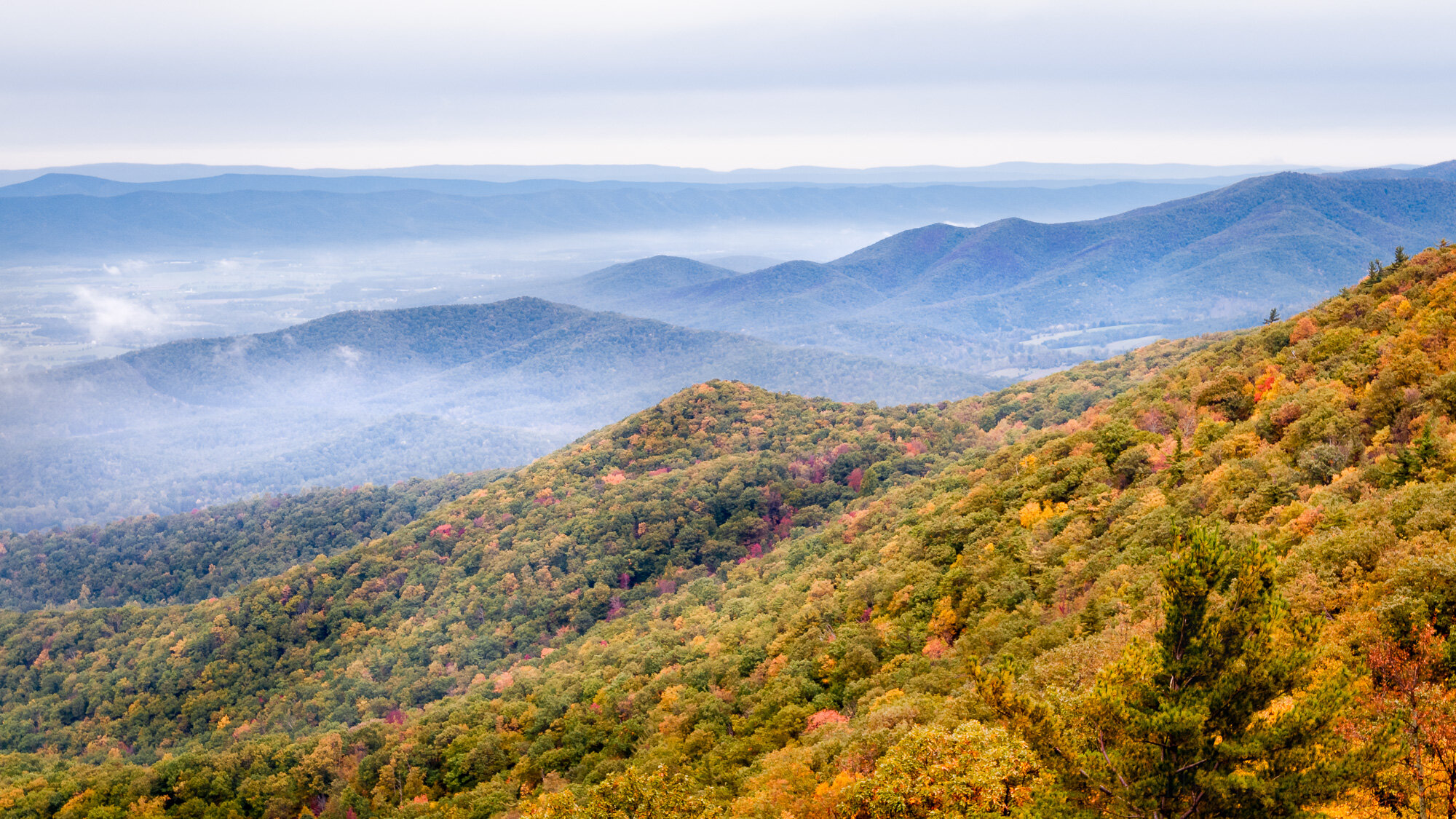 Autumn Blue : An early October view from the Blue Ridge Mountains of Shenandoah National Park