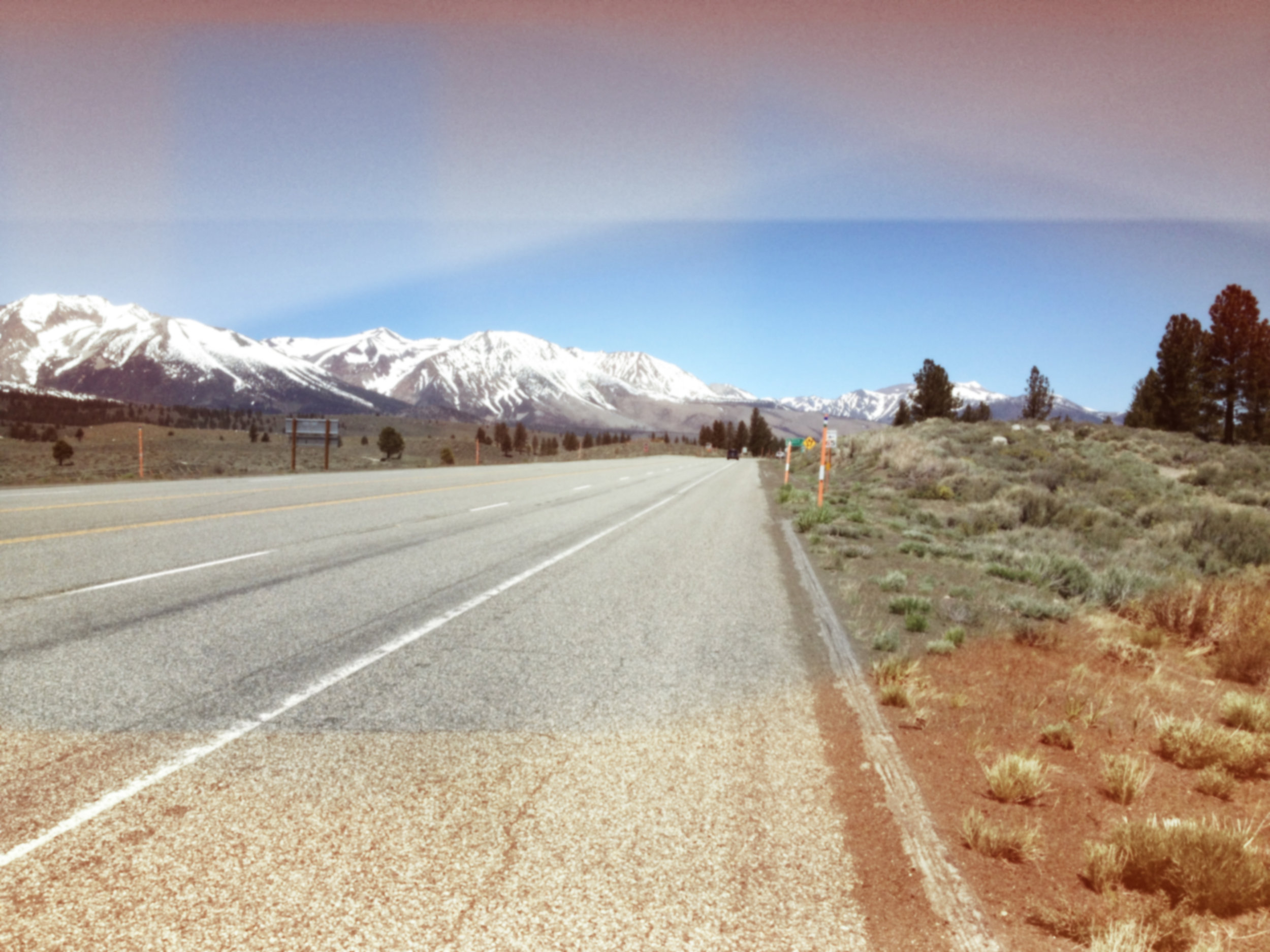 A pretty good spot. Mainly, there's room to pull over and some cool trees to look at.
