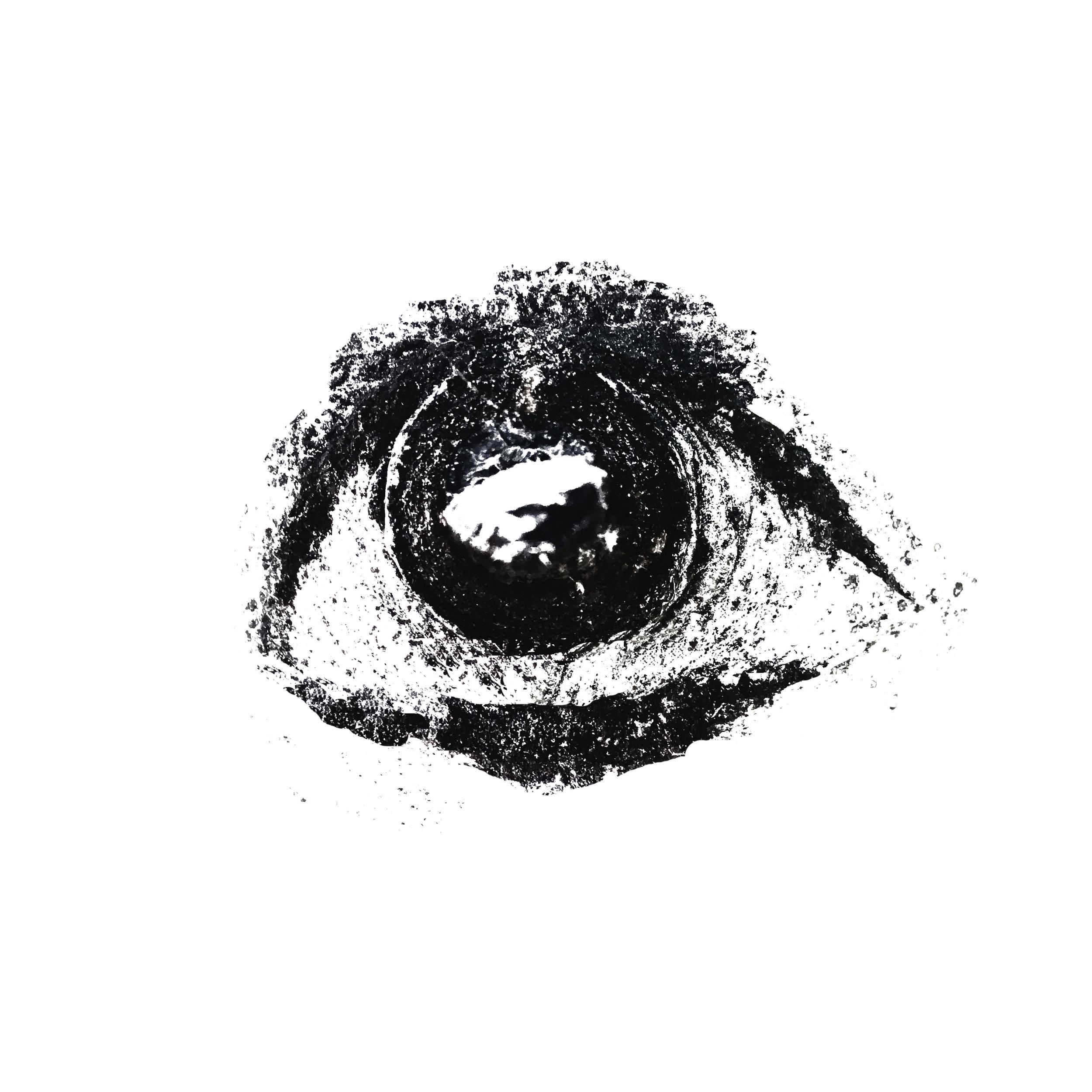EyeballSummer.jpg