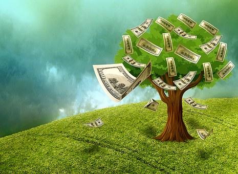money growing on trees.jpg
