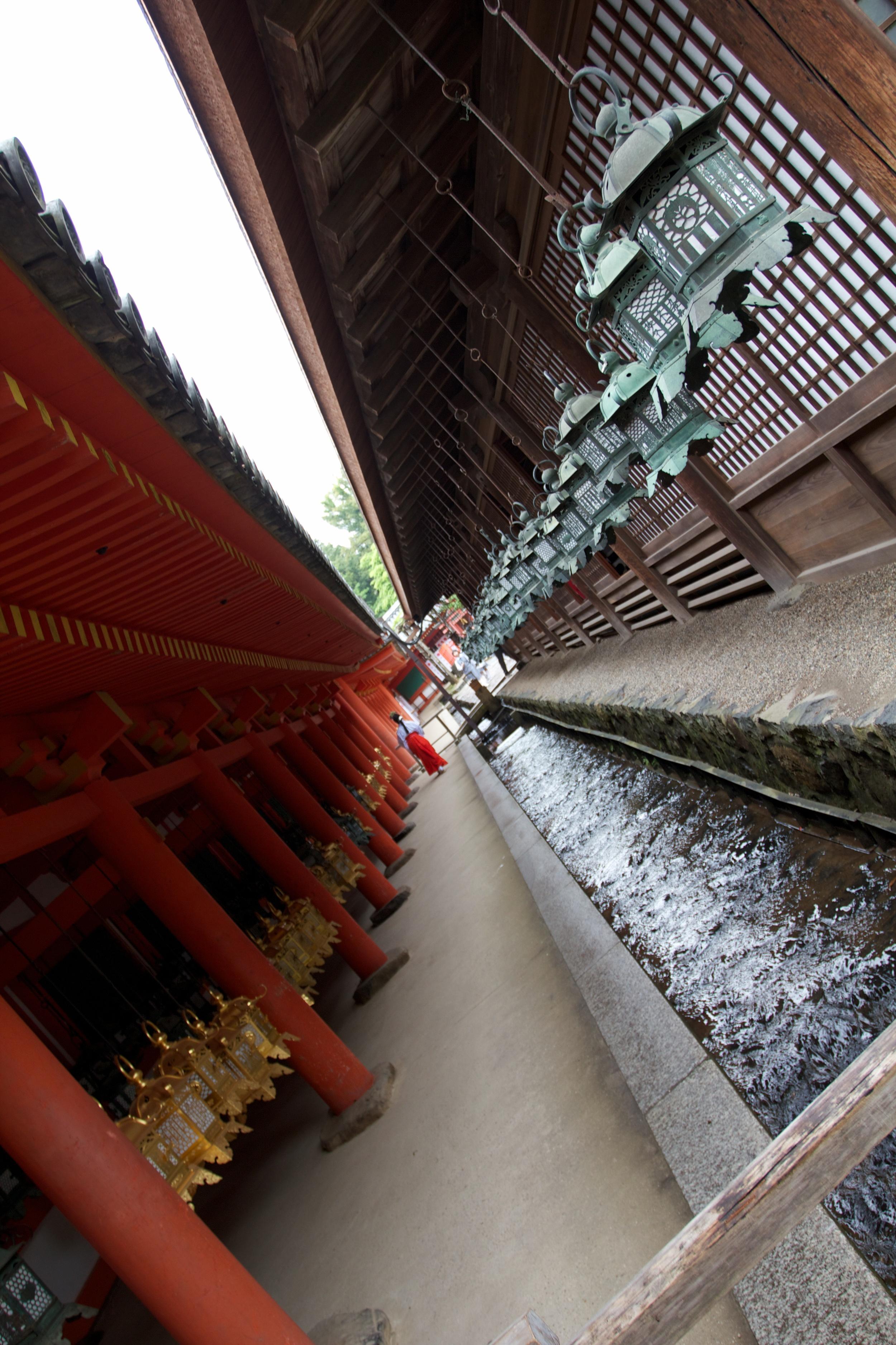 Nara Temple (2).jpg