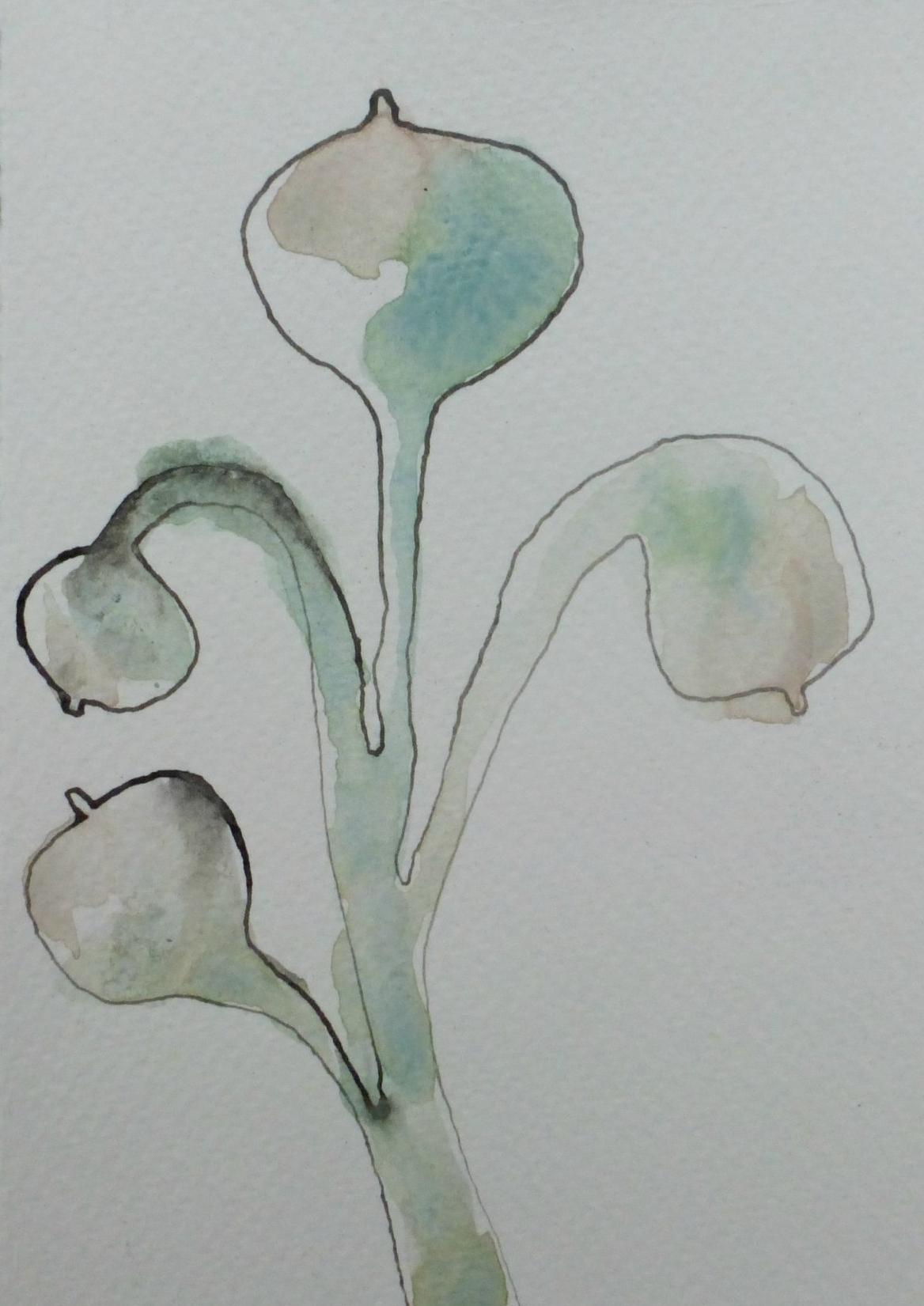Boobplant.jpg