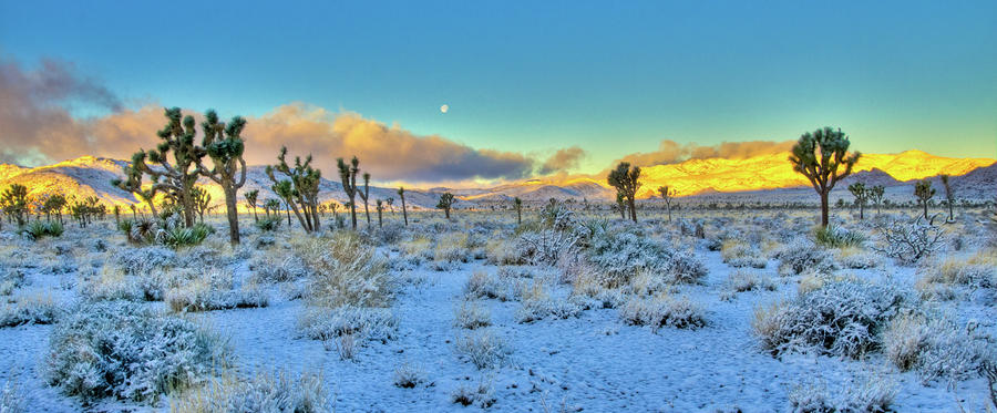 full-moon-sunrise-snow-in-desert-connie-cooper-edwards.jpg