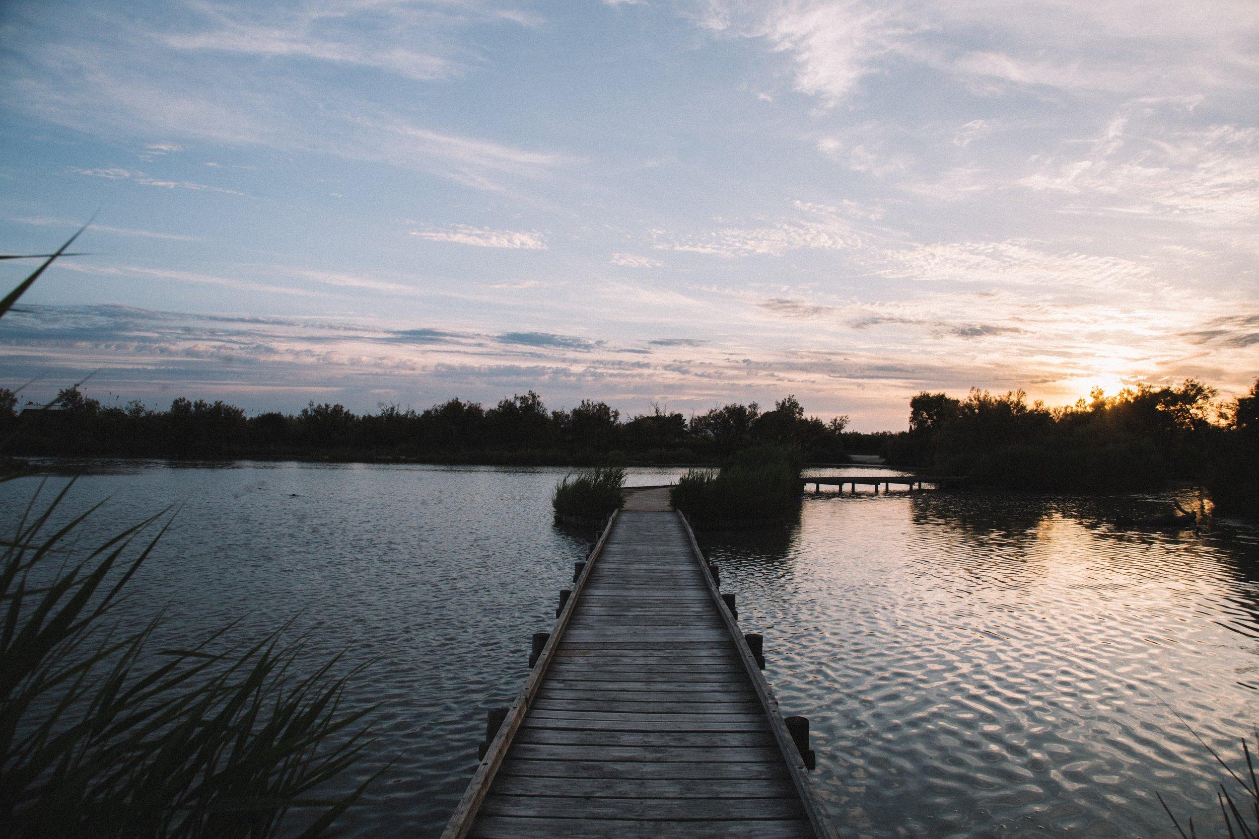 Pont-de-gau-parc-ornithologique-coucher-soleil-flamants-.jpg