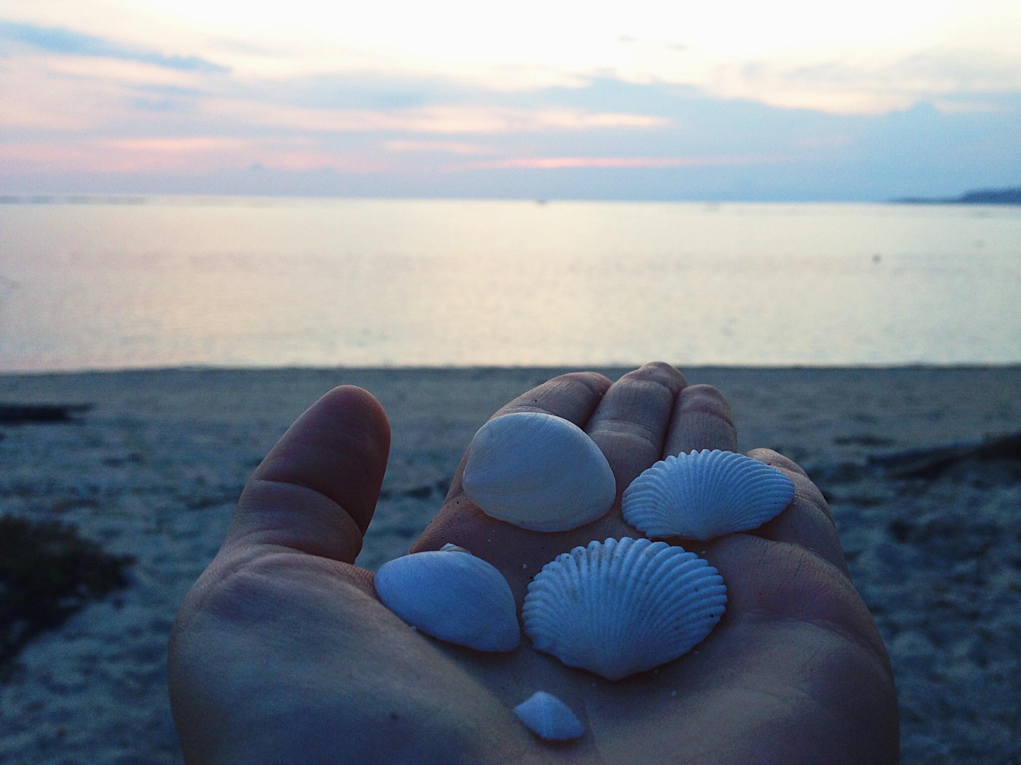 coquillages-sunset-gili-air.JPG
