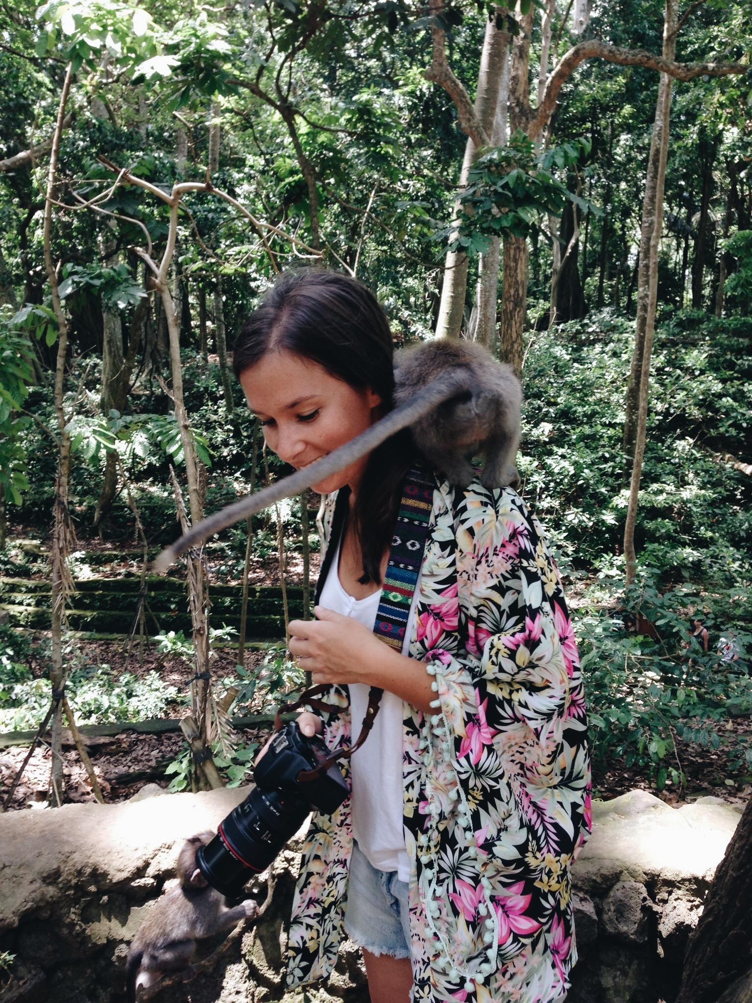 monkey-forest-bali-alex.JPG