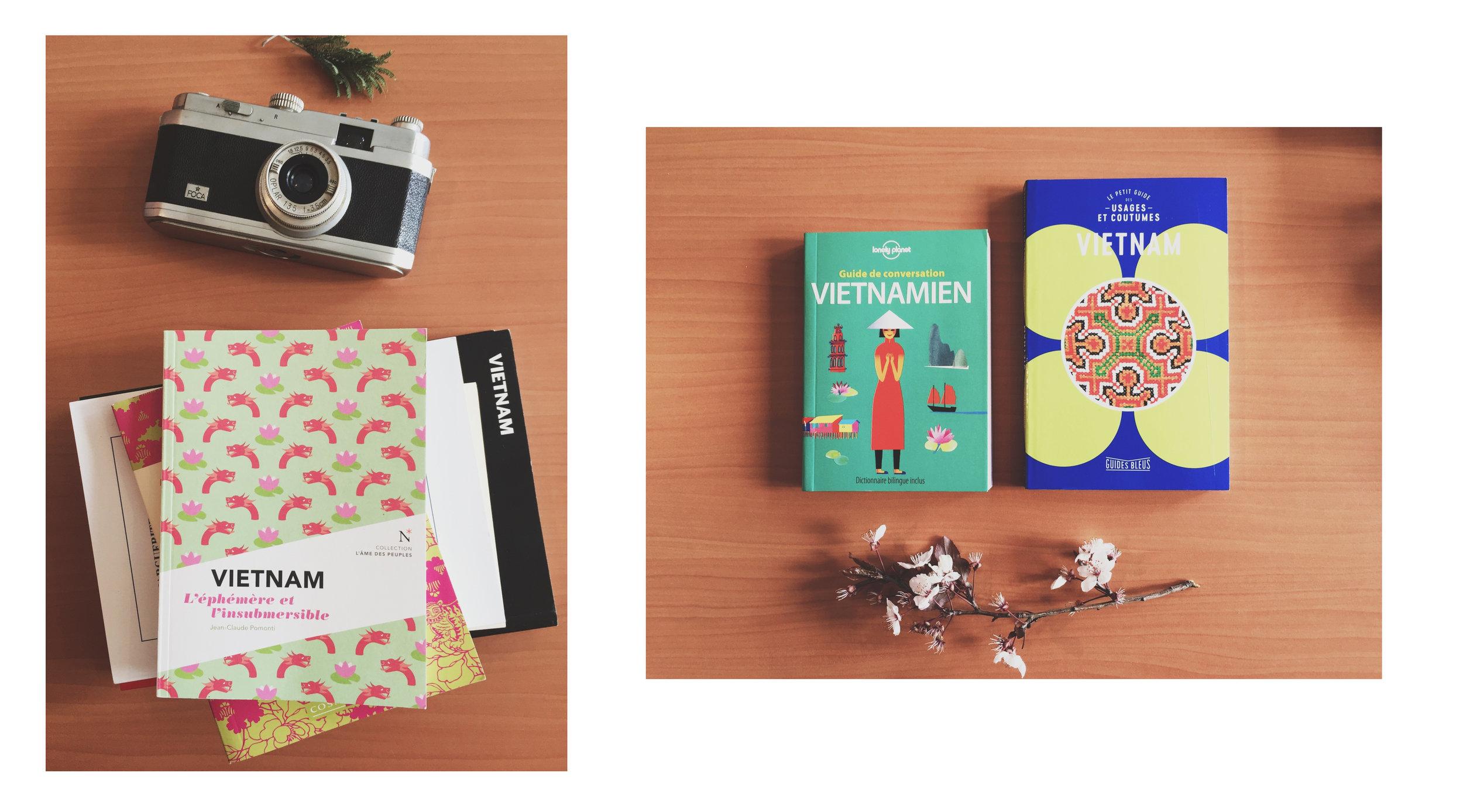 livres-guides-vietnam-voyage-.JPG
