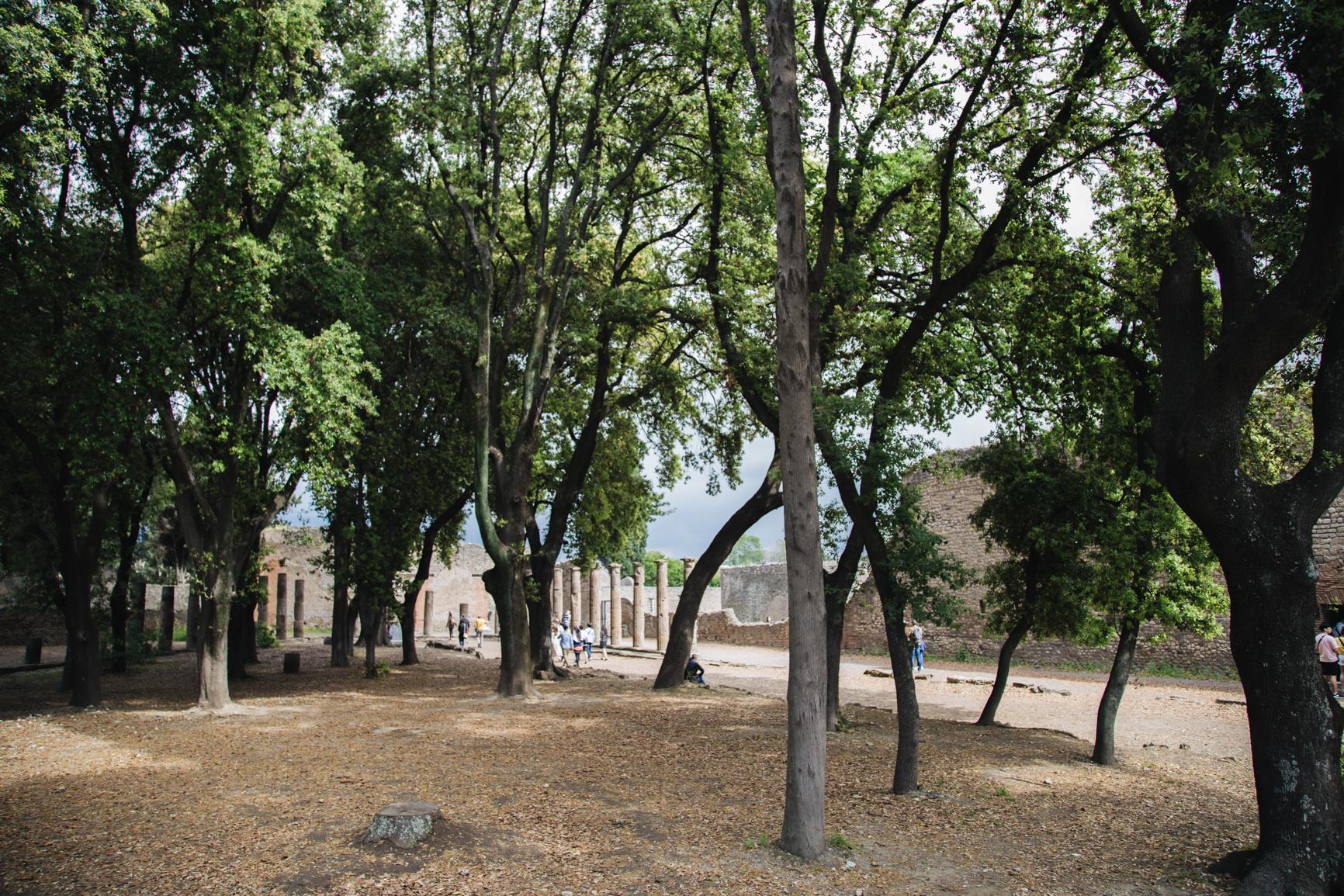 Forum Triangulaire site pompei nature Tempio Dorico - Santuario di Atena ed Eracle.jpg