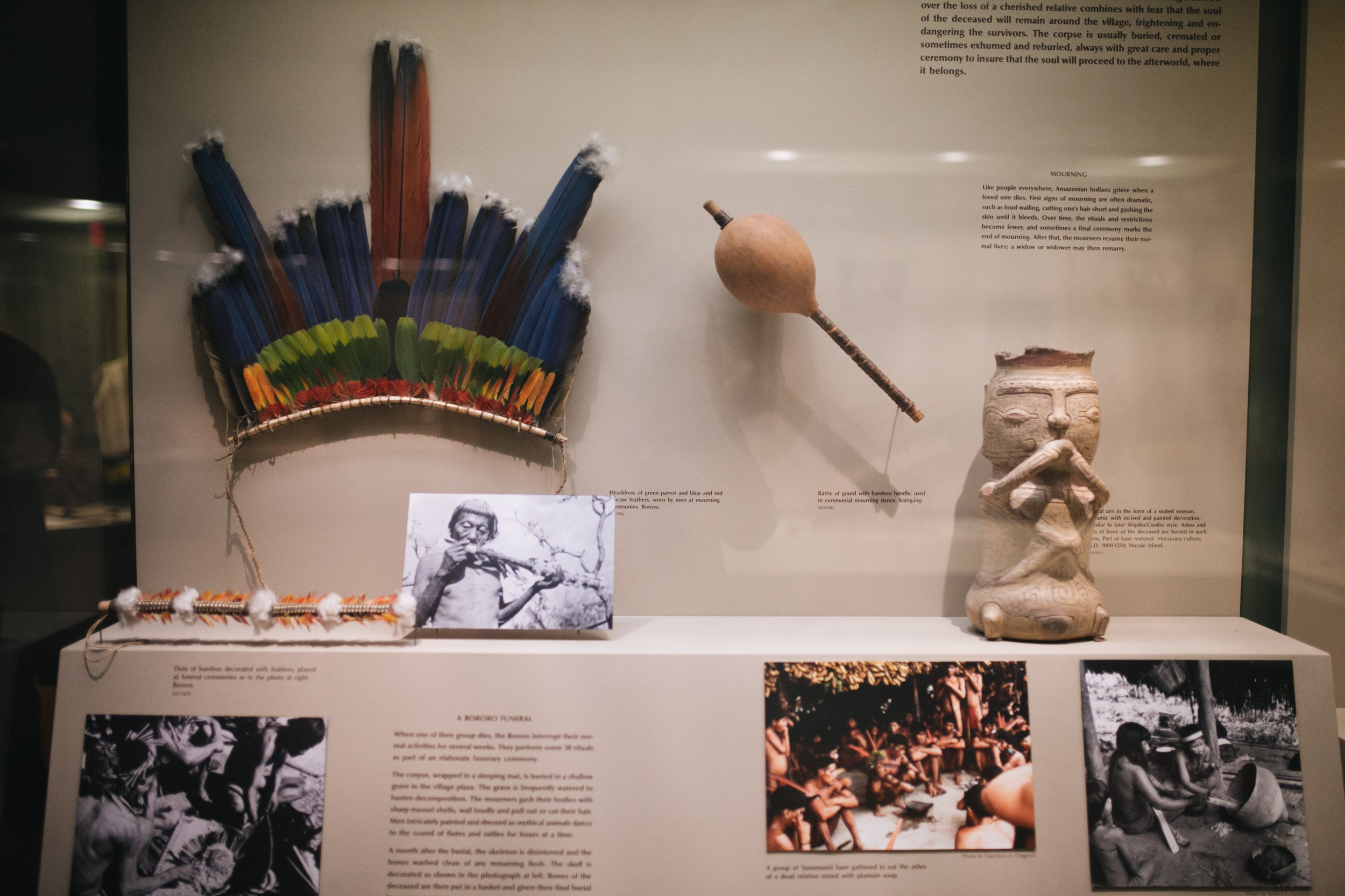 american natural history museum - newyork-city 2.jpg