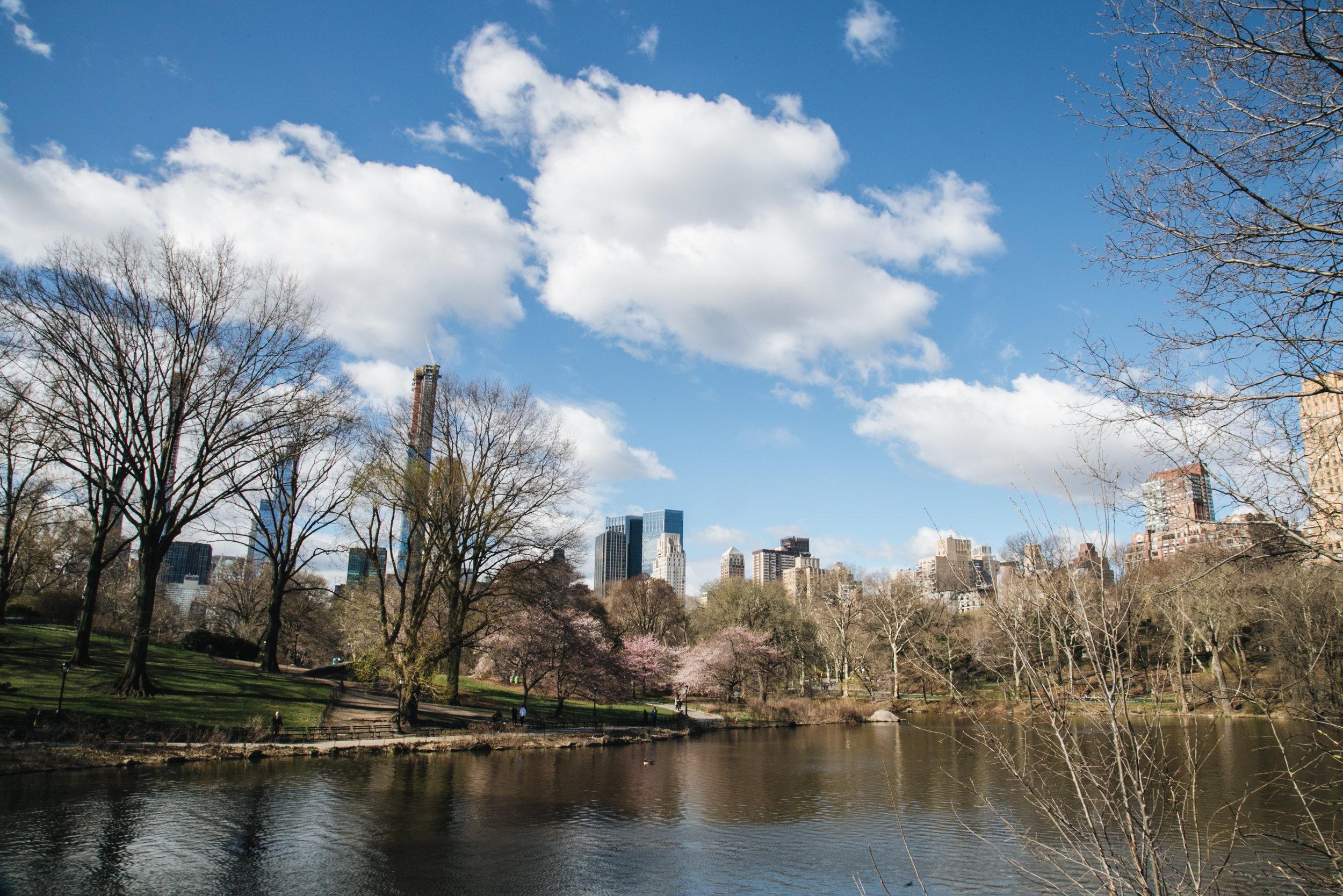 centralpark-NY-printemps-2019.jpg