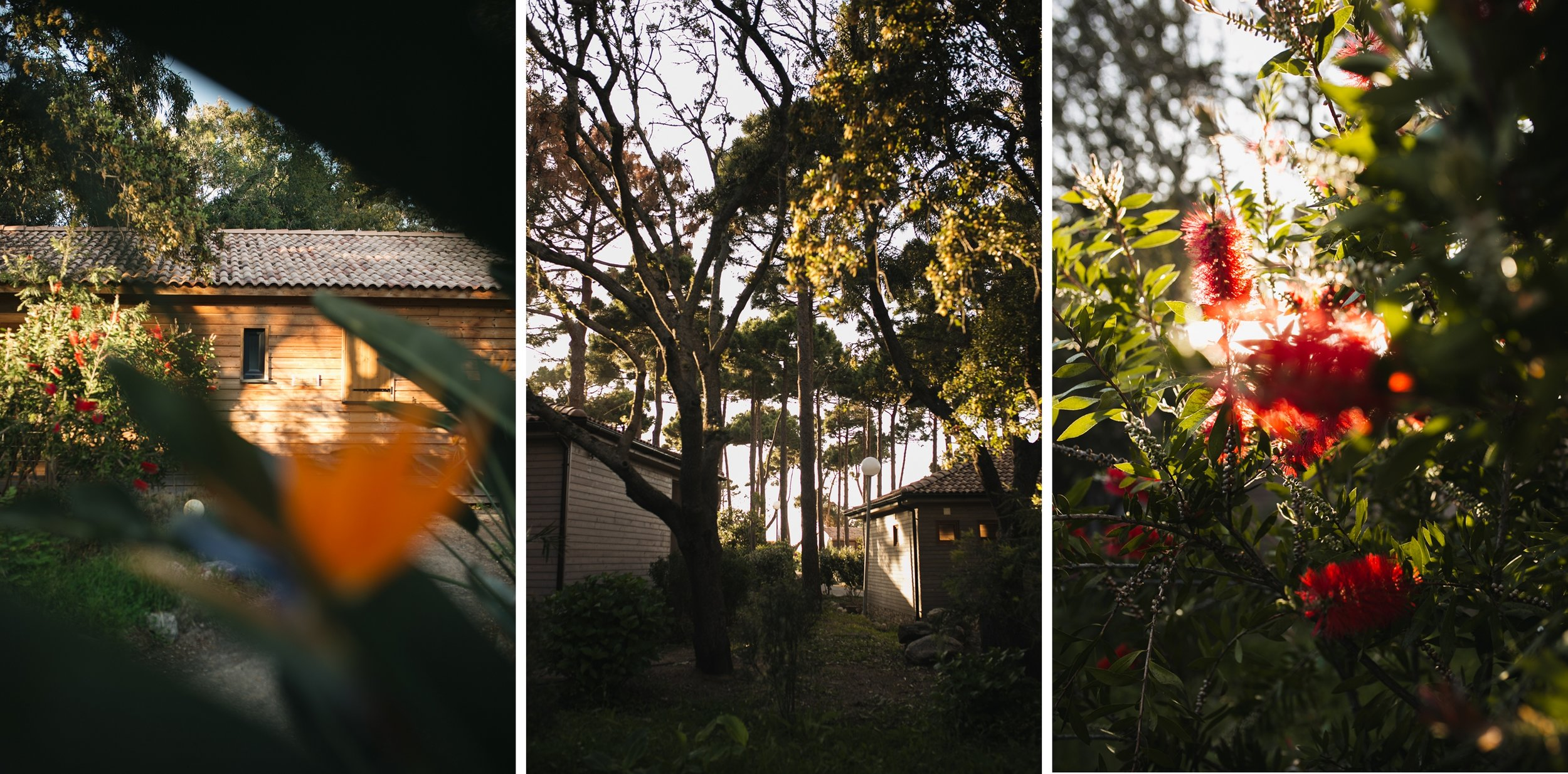 U-Livanti-coucher-de-soleil-propriano-belvedere-campomoro.jpg