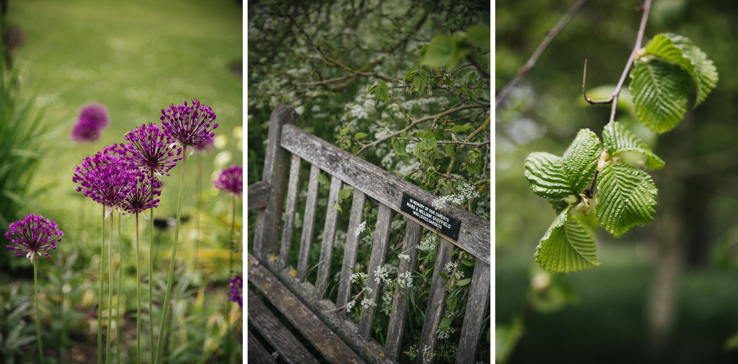 Jardin-botanique-cambridge-blog-voyage.jpg