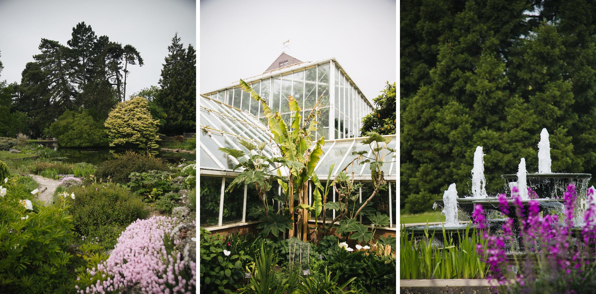 Jardin-botanique-blog-voyage-onmyway-cambridge.jpg