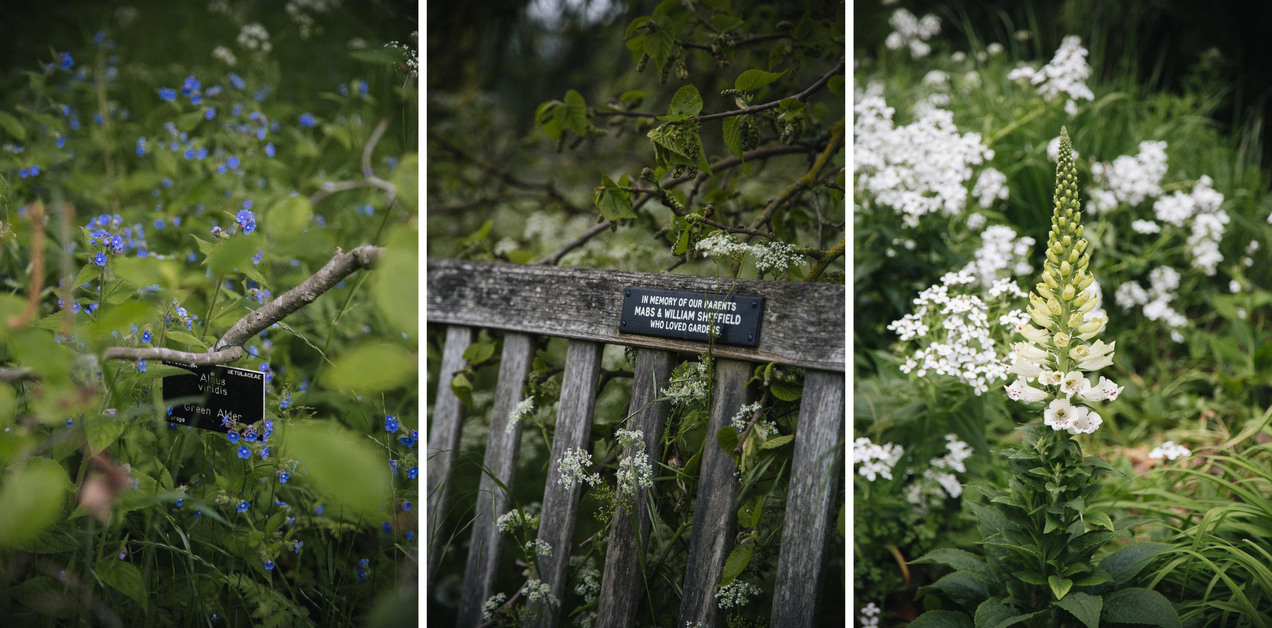 jardin-botanique-cambridge-universite.jpg
